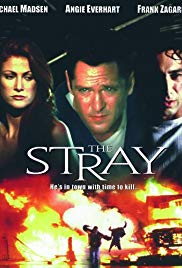 The Stray 2000 Cover