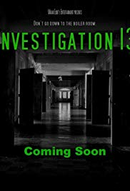 Stream Investigation 13 (2019)